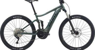 giant stance e+ 2 29er electric mountain bike review 2021